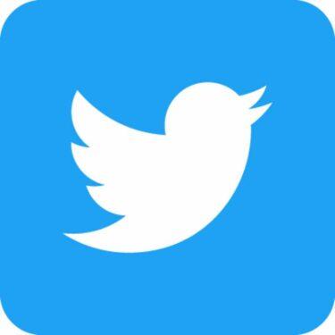 【SNS運用】ブログ初心者こそ、ブログで書いた記事を、Twitter(ツイッター)で呟くメリットが大きい。【ブログ運営】